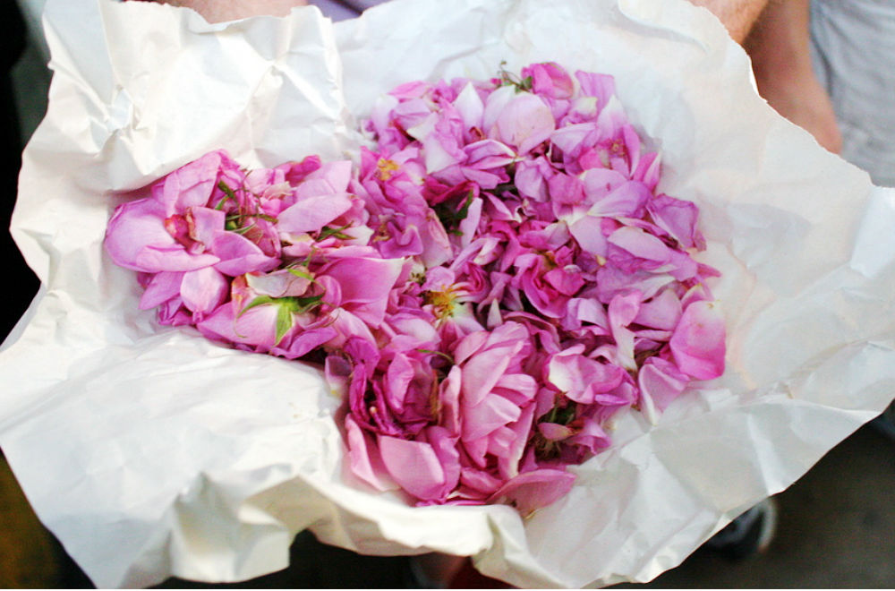 Eco Chick Rosewater Beauty Recipes 2