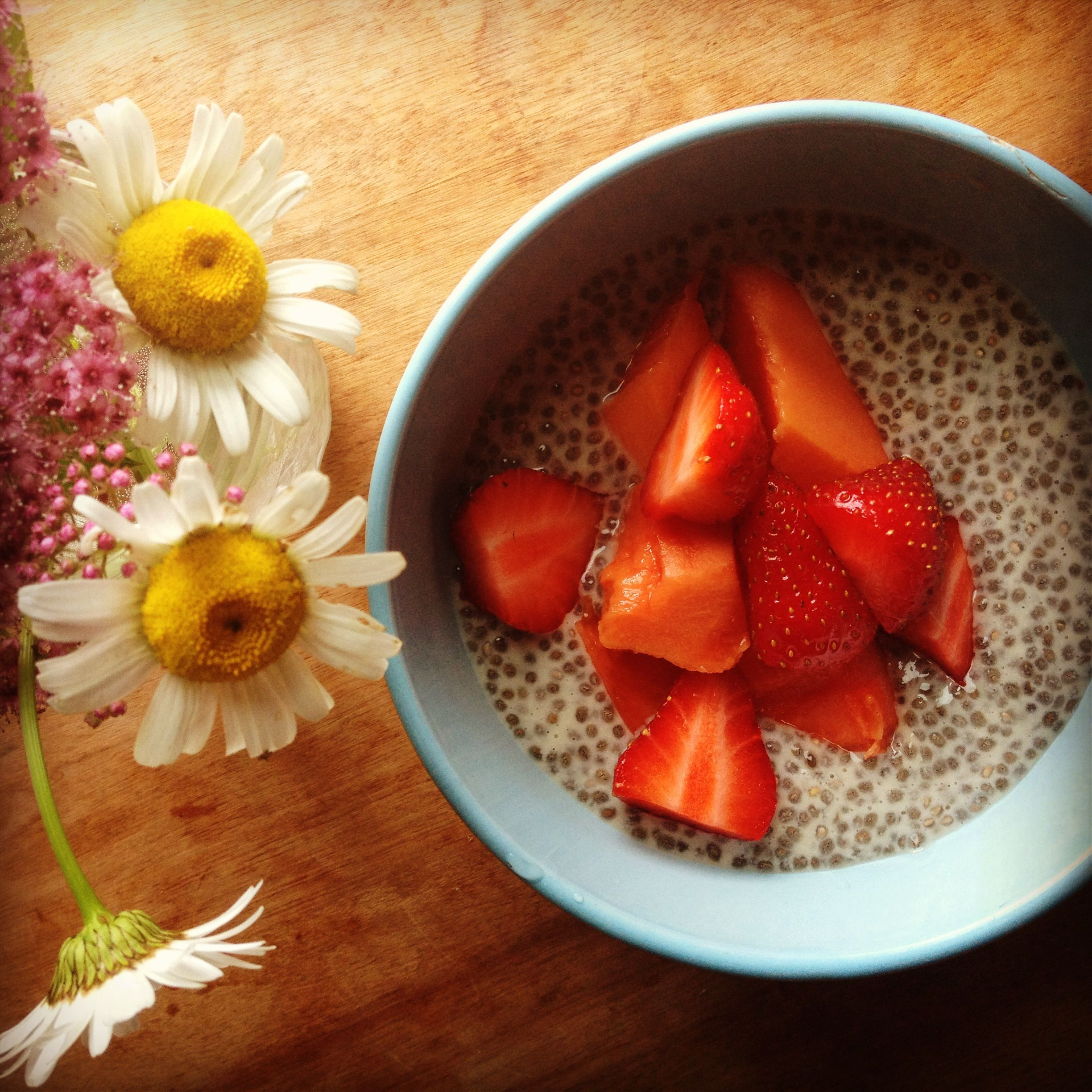 A bowl of chia pudding with fresh local Vermont strawberries.