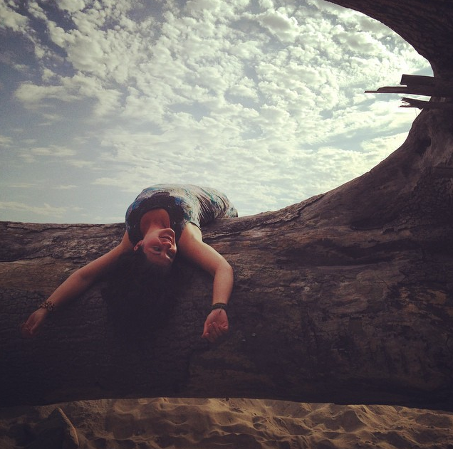 Cape-Lookout-Driftwood-Starre-Vartan