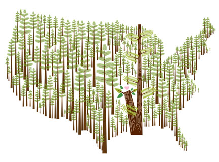 This Land Is Your Land, by Amy Ruppel Print type: digital Print size: 8 in. x 10 in. (image is 5 in. x 7.5 in.) Edition of 100 15% of the gross sale of this print goes to: American Forests