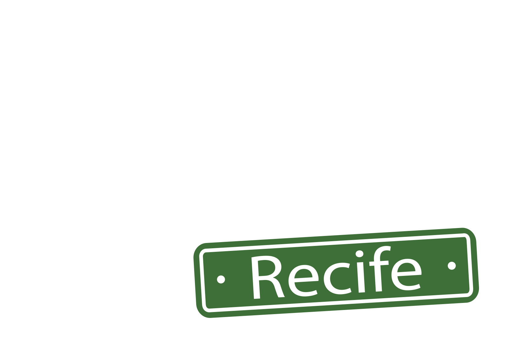 fhox on the road-recife-novo-branco