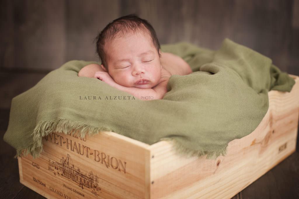fotos de bebes recém-nascidos gemeos