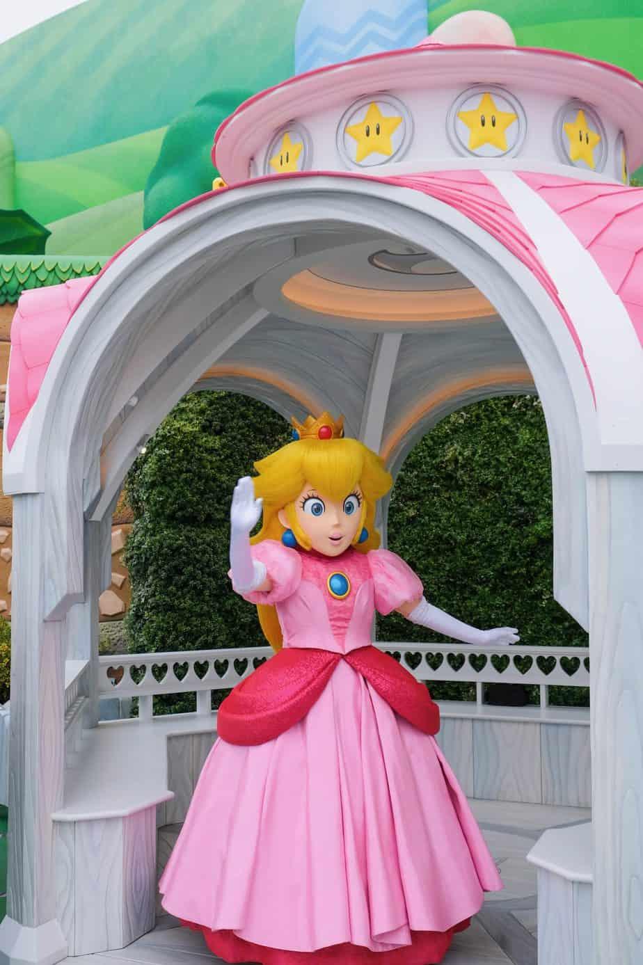 Princess Peach Character Greeting