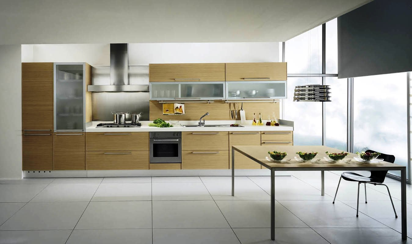 Kitchen Cabinets Pictures Contemporary