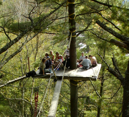 forest-canopy-tour