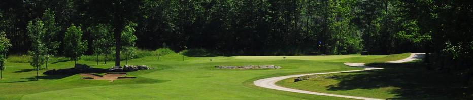 stone-tree-golf