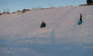 toboganning-hill-2