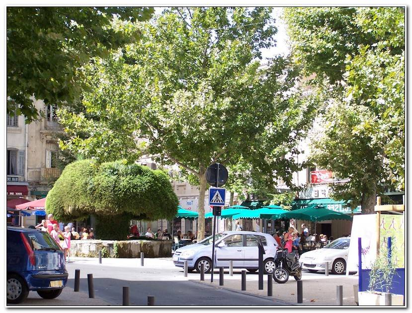ÉLéGant Salon De Provence Marseille