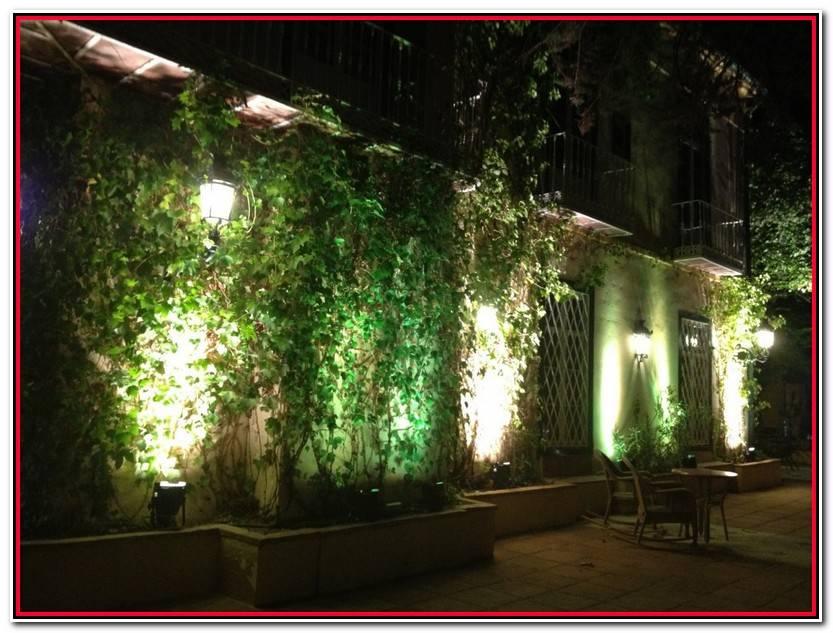 Único Iluminacion Jardines Galería De Jardín Decoración