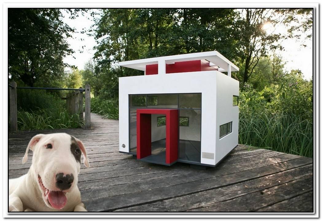 10 Stylish Dog Houses
