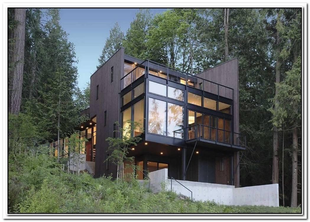 A House Amongst Trees
