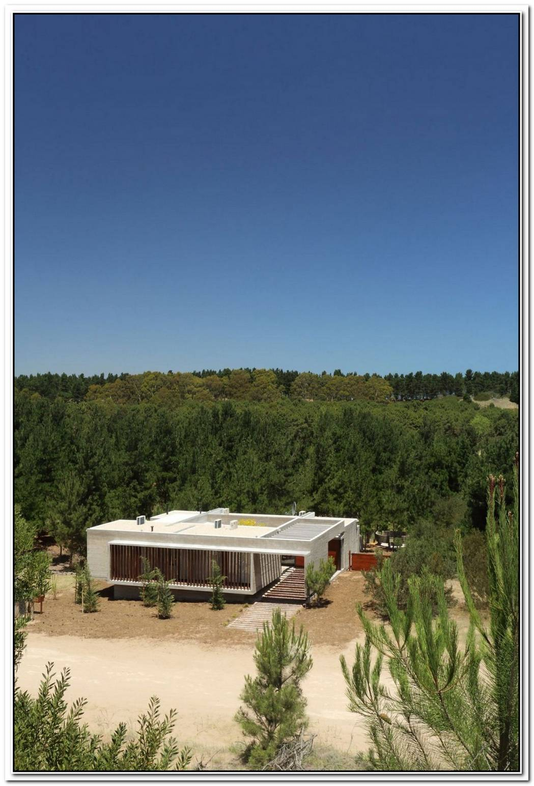 A Summer House Set On Top Of A Dune With A Forest Backdrop