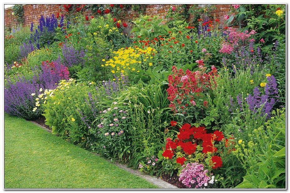 Amenager Son Jardin Avec Des Vivaces