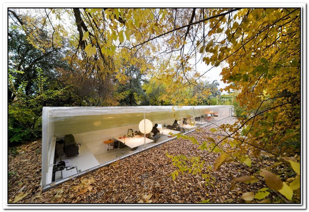 An Office In The Woods Selgas Cano Architecture