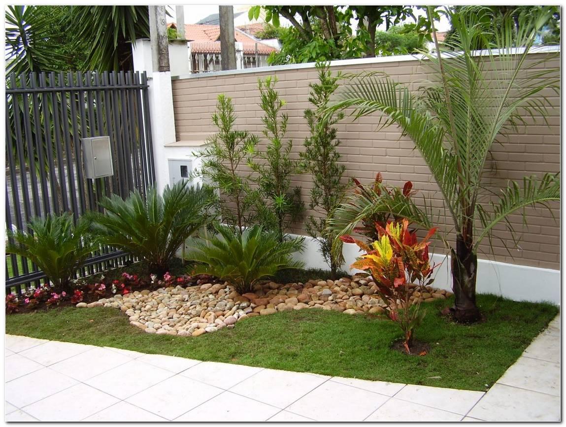 Arvores Para Decorar Frente De Casas