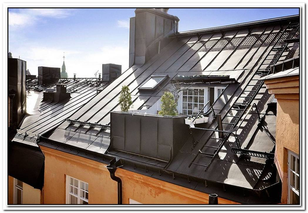 Attic Apartment With A Roof Terrace