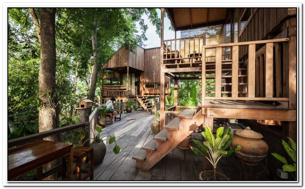 Backyard JungleStunning EcoFriendly Homes Engulfed In Forest Canopy