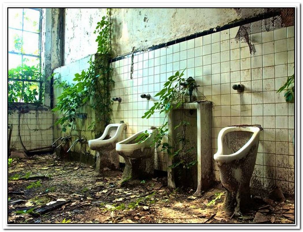 Bathroom School Abandoned House