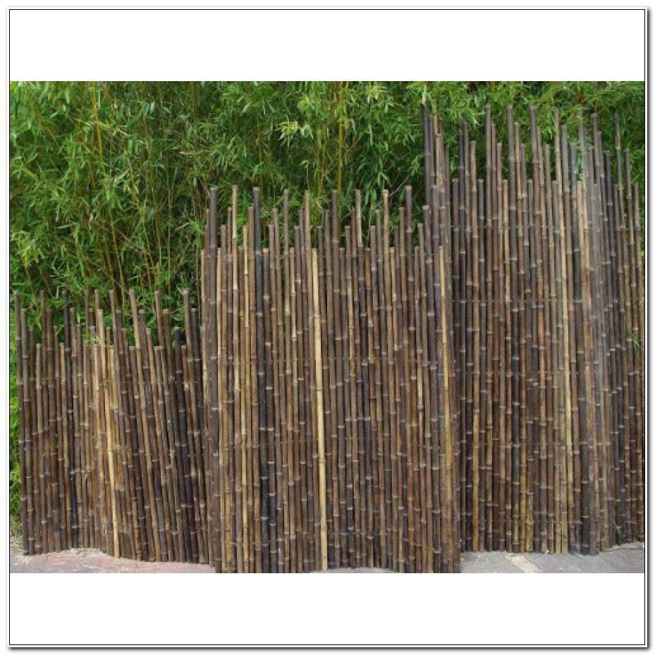 Brise Vue Bambou Castorama