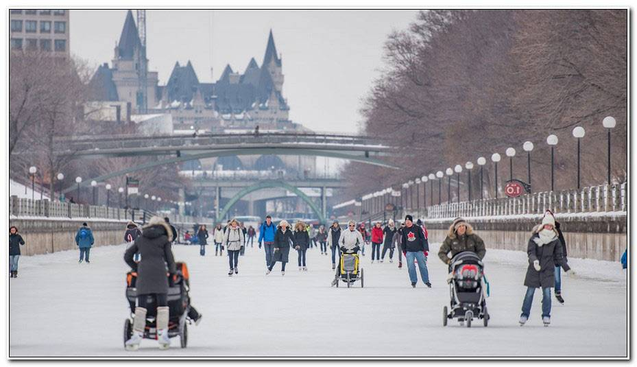 Canal Rideau Patinage