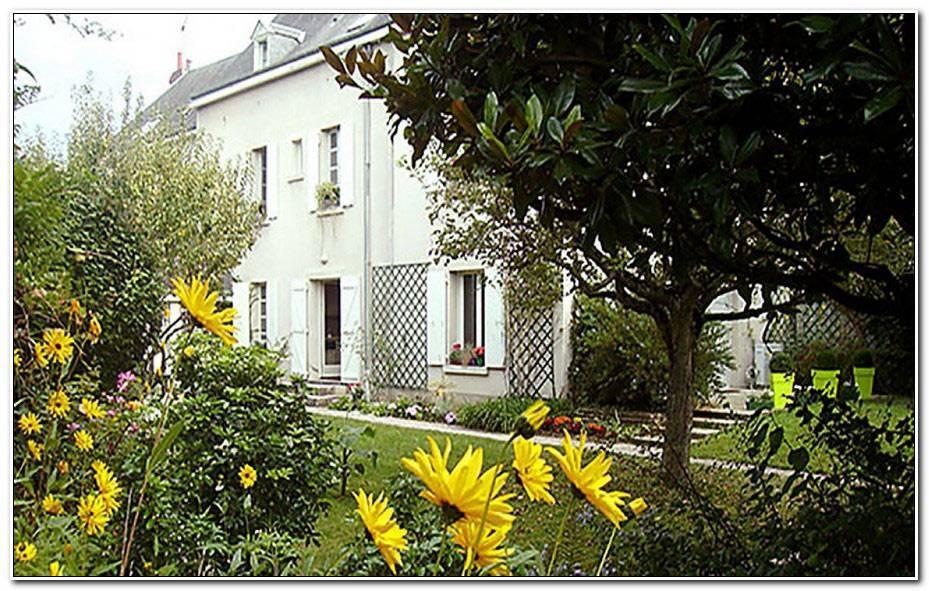 Chambre D Hote Saint Aignan Sur Cher
