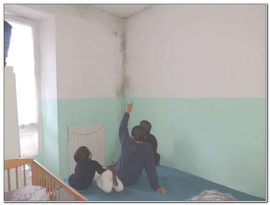 Comment Reparer Un Mur Interieur Humide