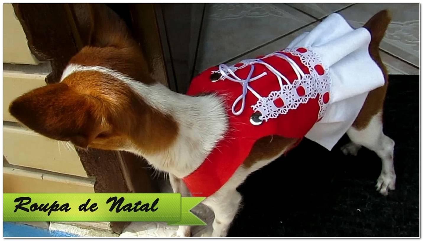 Como Fazer Roupa Para Cachorro 42 Ideias Incríveis & Fáceis De Fazer