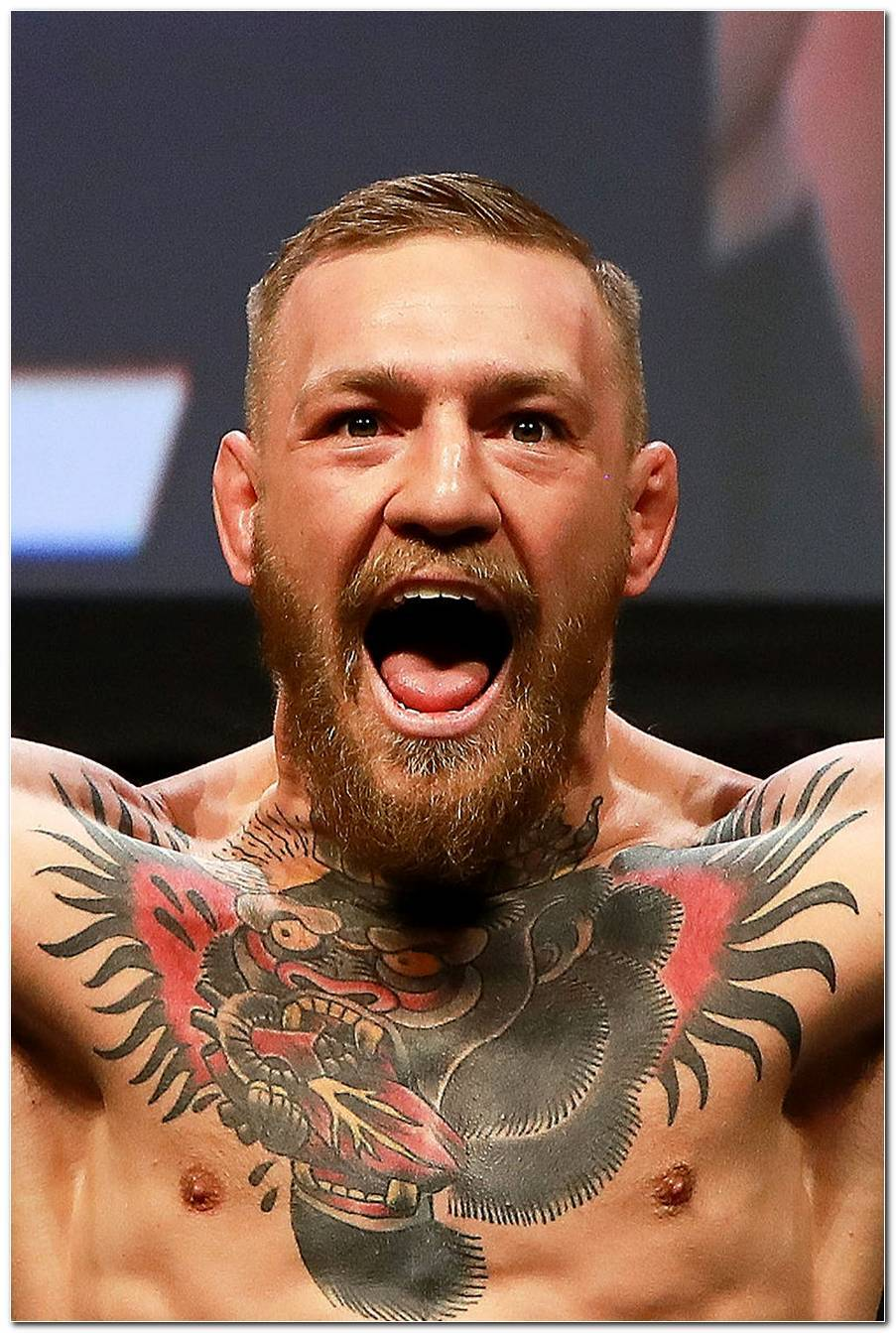 Conor Mcgregor Frisur