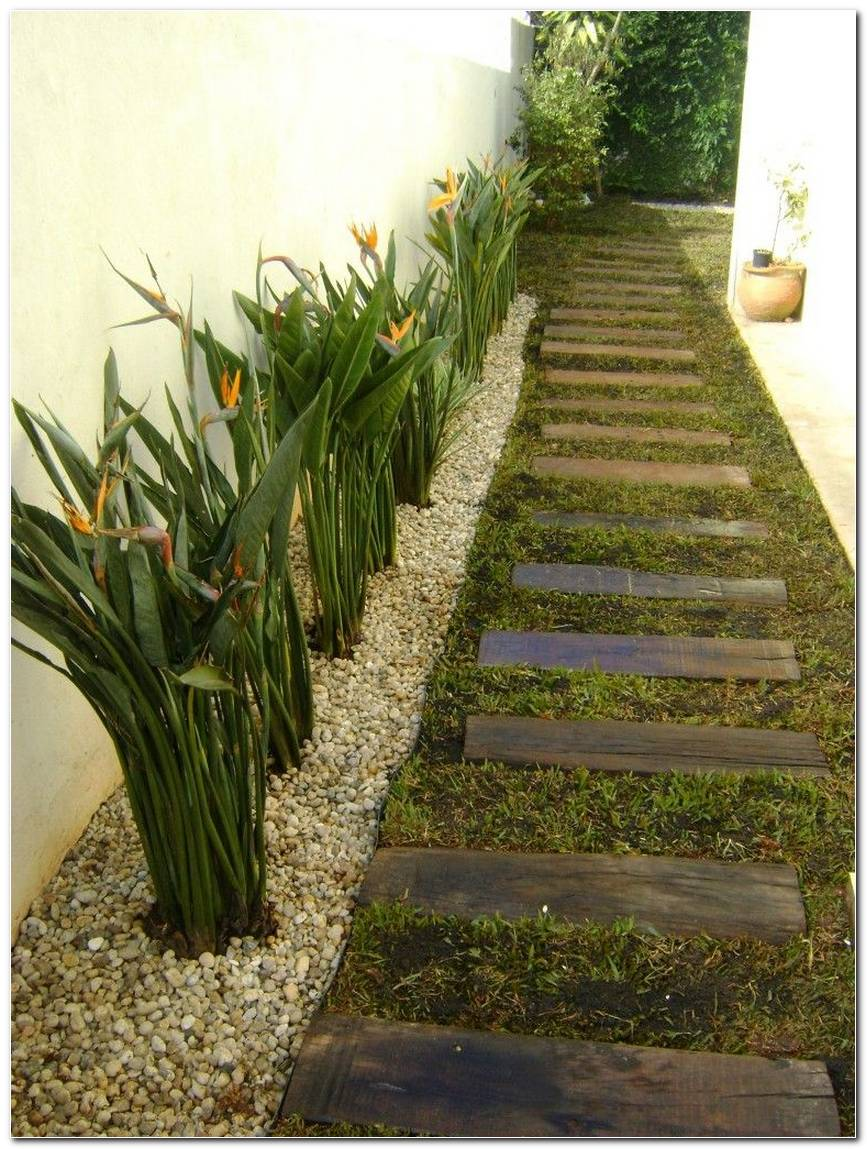 Corredor Externo Com Plantas