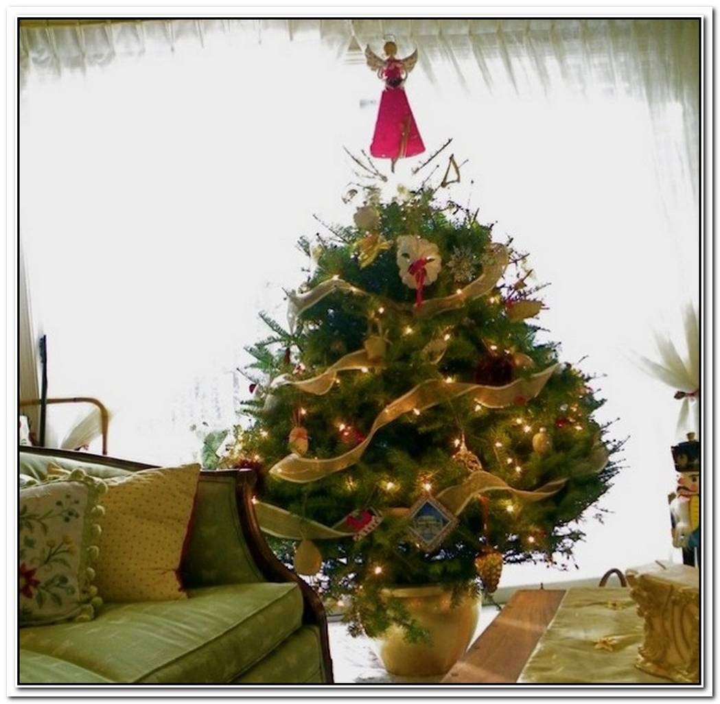 Creative Ideas For SpaceSaving Christmas Trees For Your Home