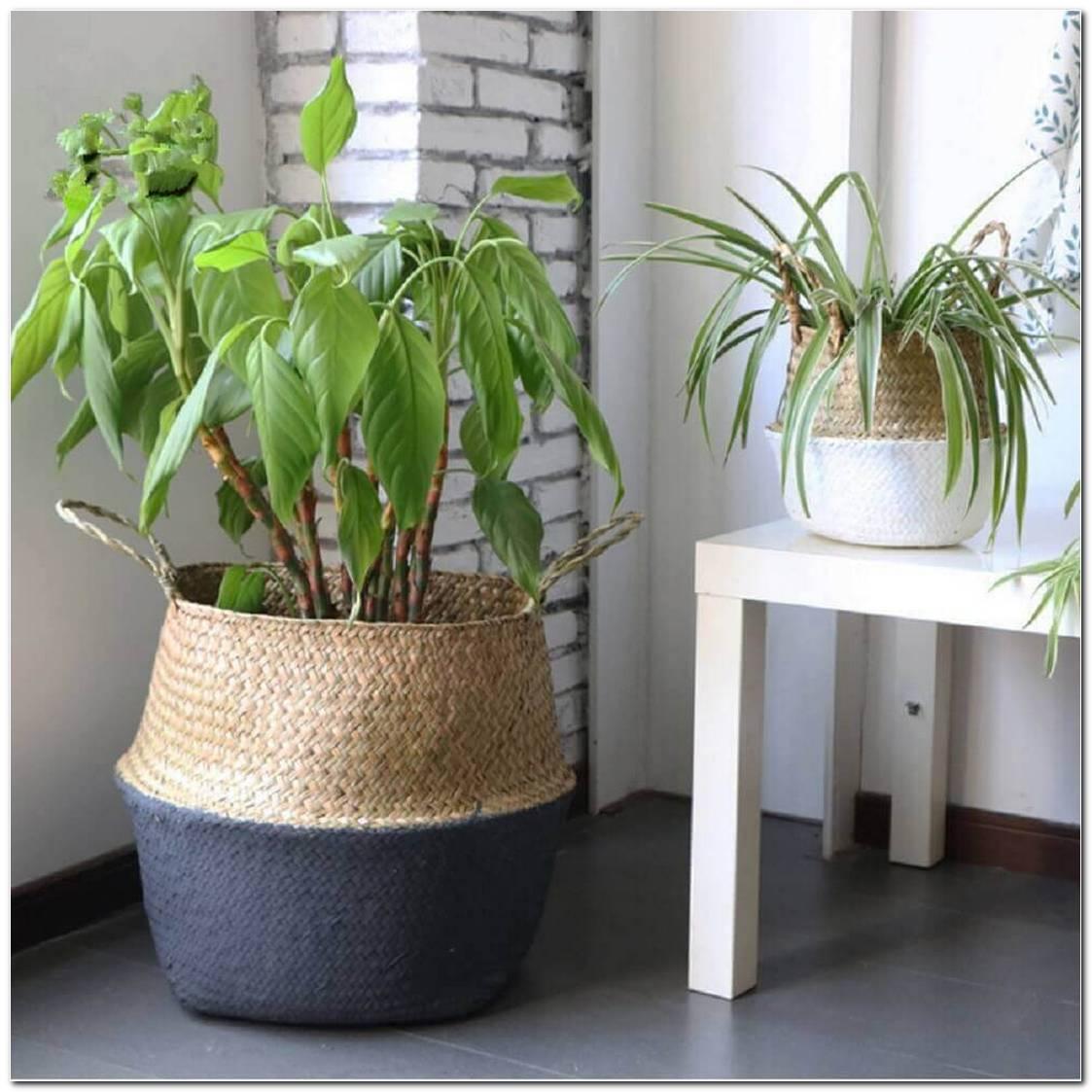 Decoração Com Vaso De Cerâmica 35 Modelos Lindos & Como Fazer