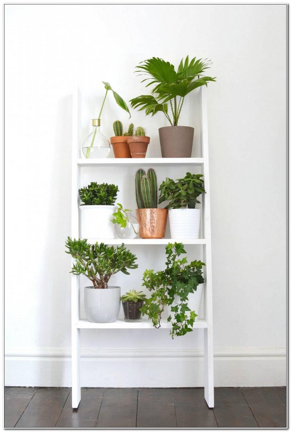 Decoration Murale Avec Plantes