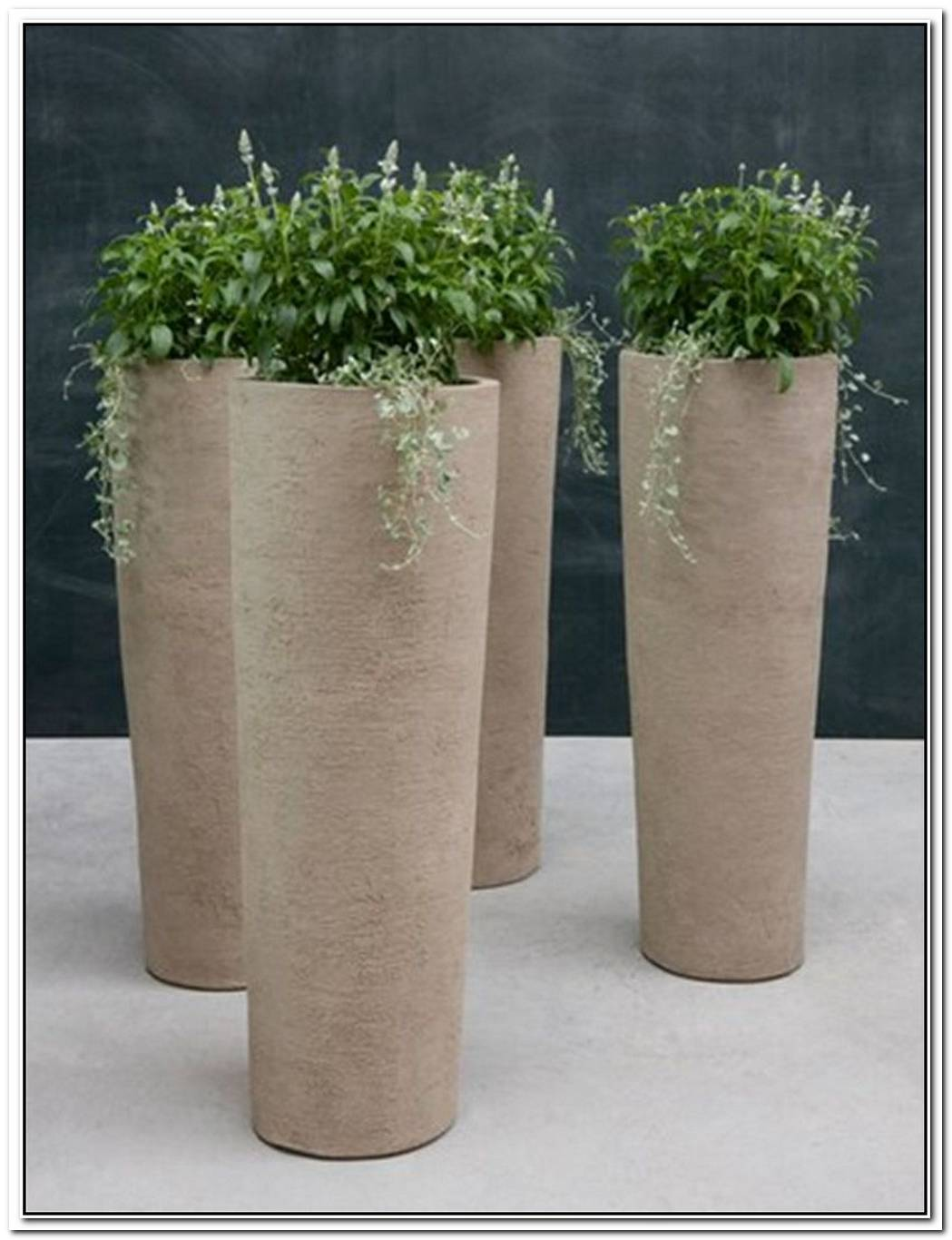 Elegant Indoor Planter By Paula Haynes