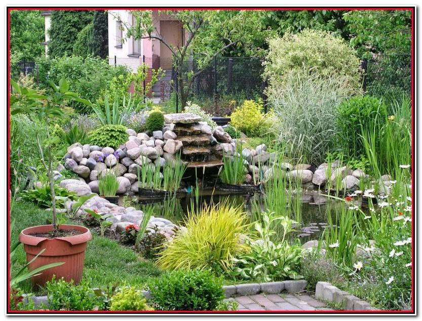 Elegante Estanque De Jardin Galería De Jardín Decoración