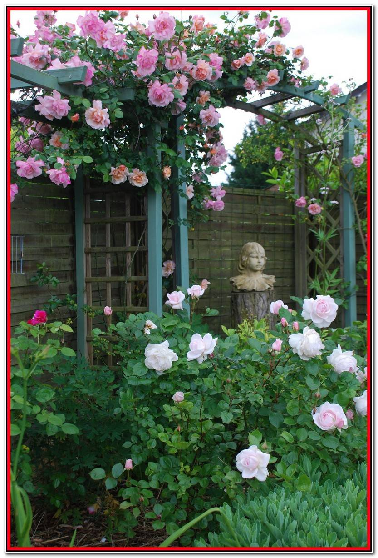 Encantador Castas De Jardin Fotos De Jardín Decoración