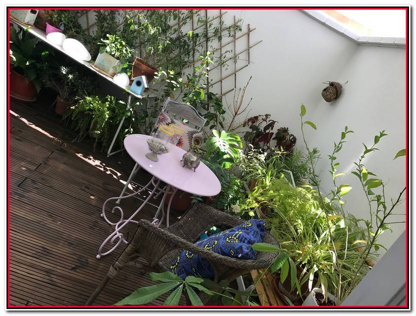 Encantador Decoración Jardines Fotos De Jardín Accesorios