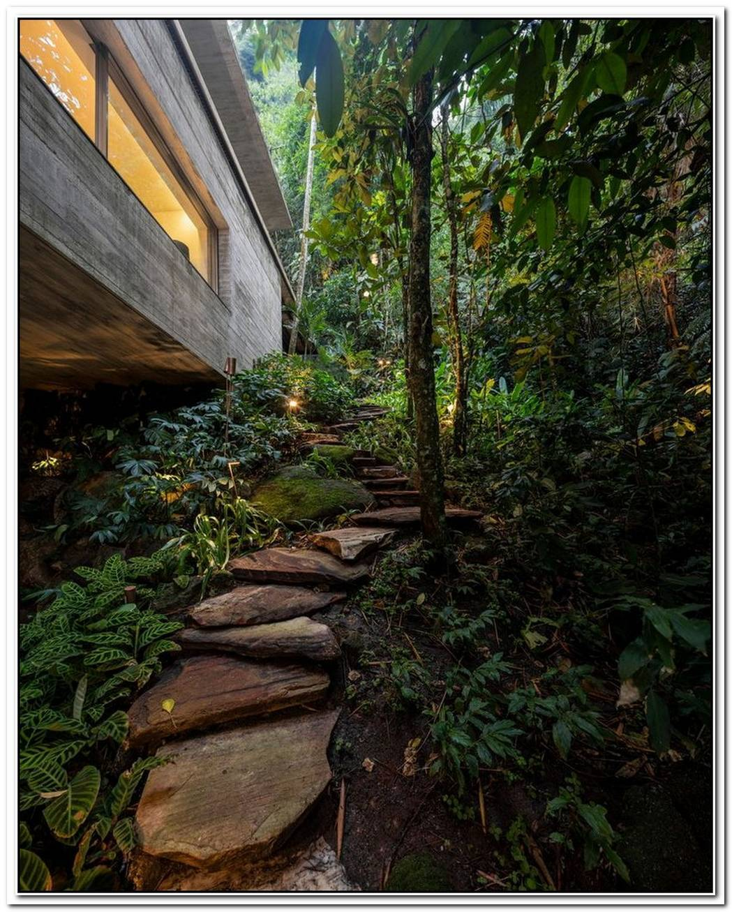 Family Home Emerges From The Jungles Of Brazil