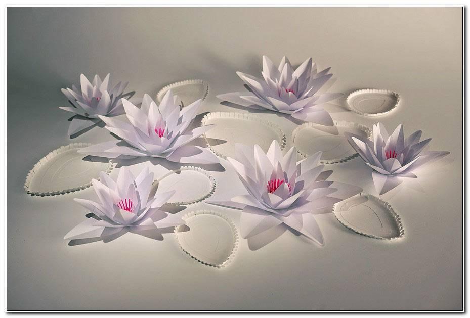 Fleur De Lotus Papier