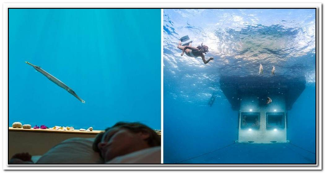 Floating Underwater Hotel Room In Zanzibar Promises A Magical Adventure