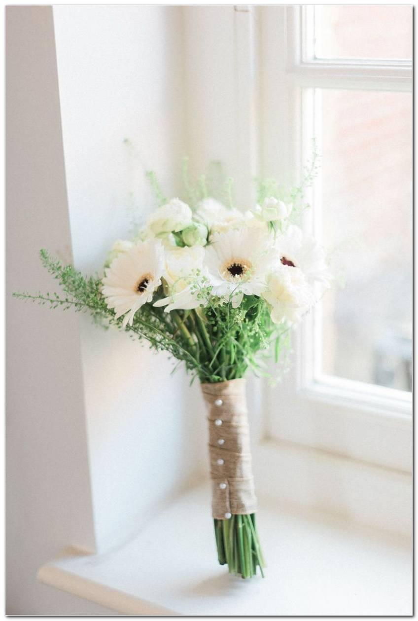 Flores Do Campo Tipos Espécies E Ideias De Decoração