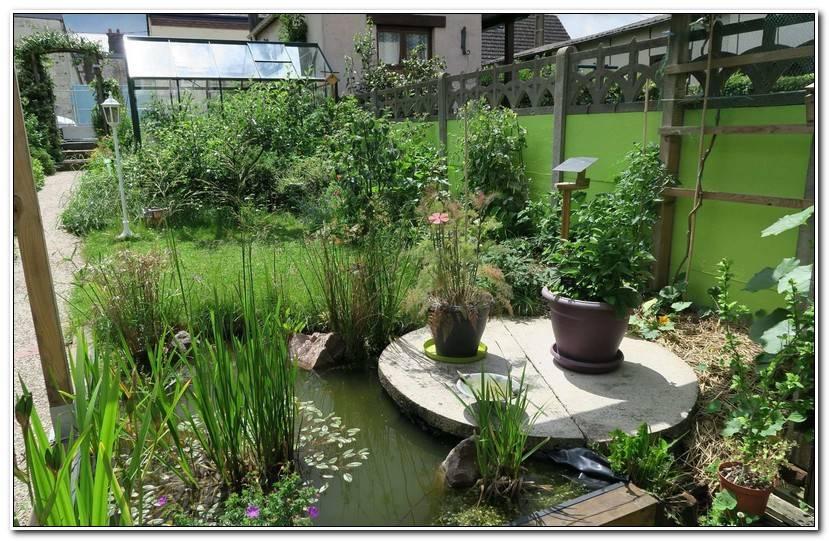 Frais Le Petit Jardin Dutronc