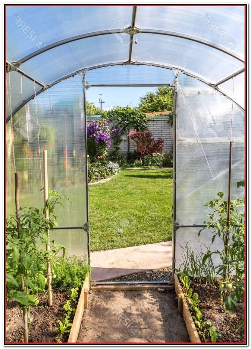 Hermoso Invernaderos Jardin Imagen De Jardín Decorativo