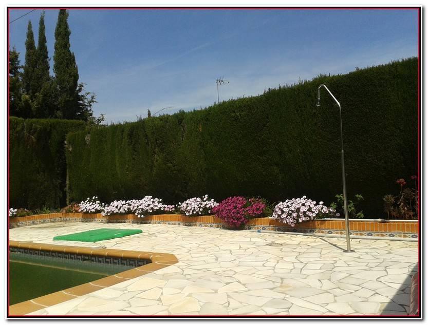 Hermoso Jardines Particulares Galería De Jardín Decorativo