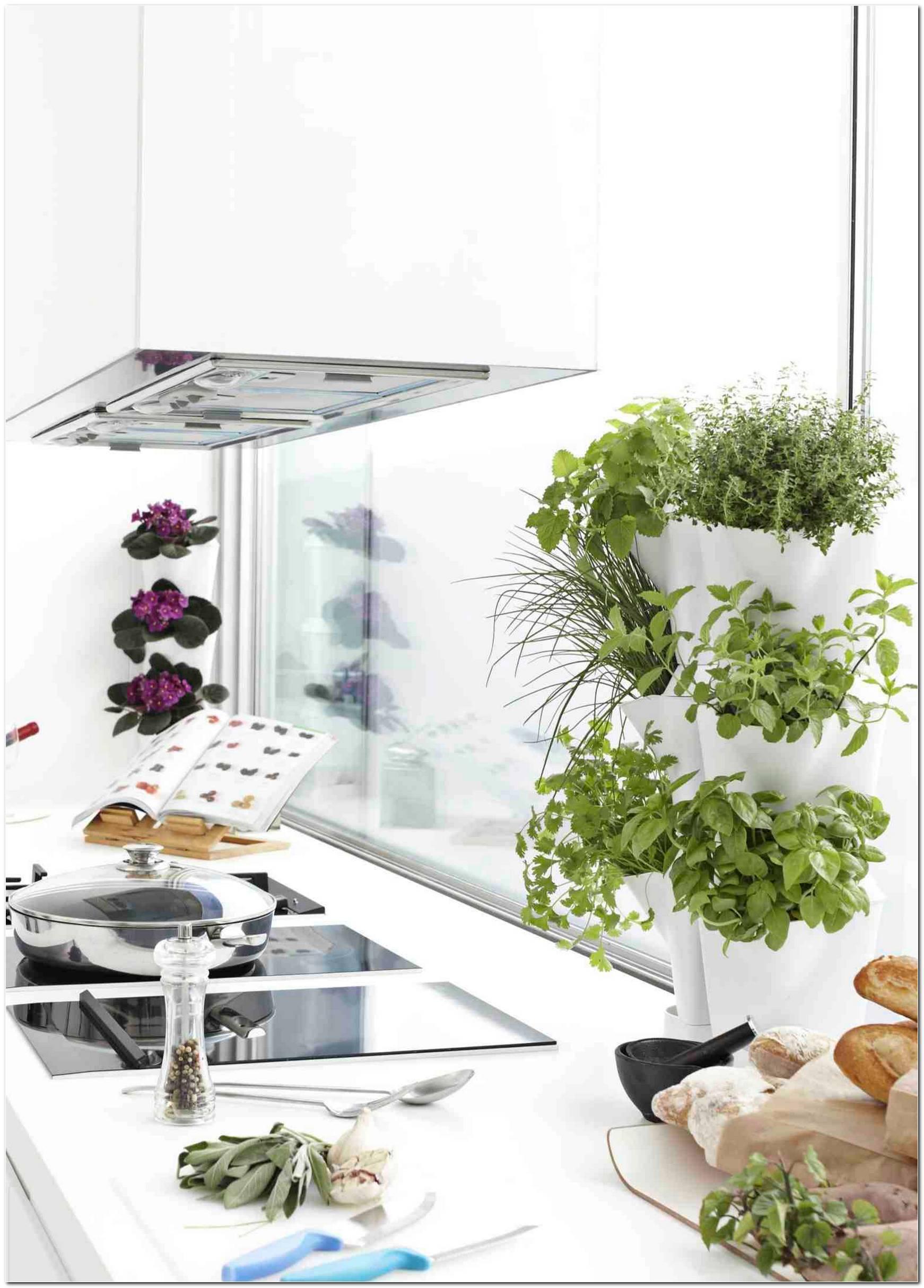 Horta Vertical Saiba Como Montar E Decorar Com 60 Imagens