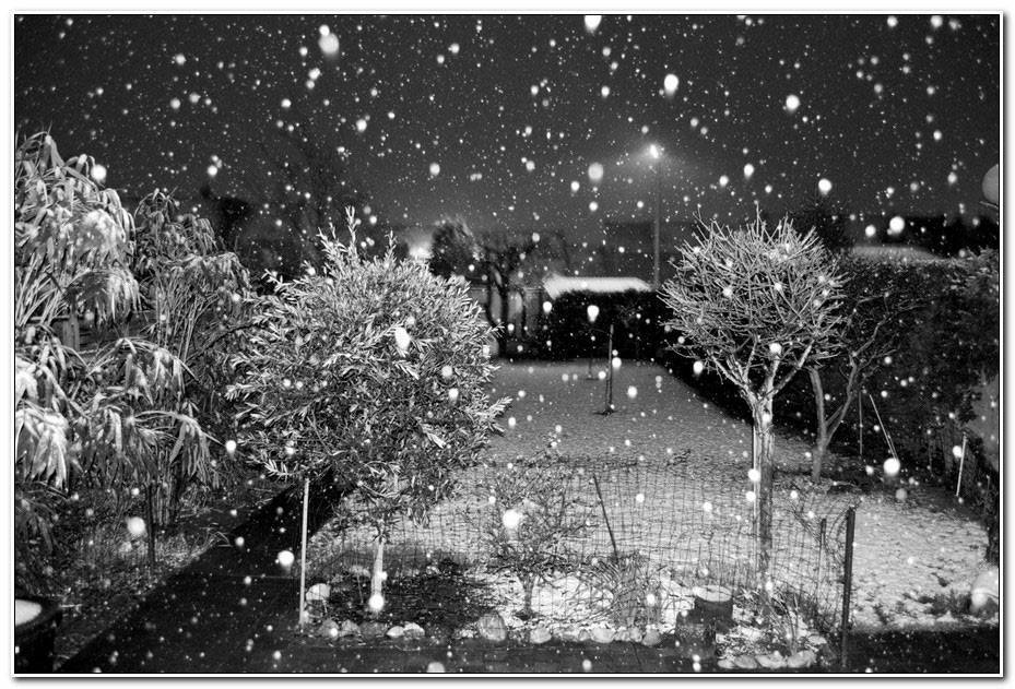 Image Noel Noir Et Blanc
