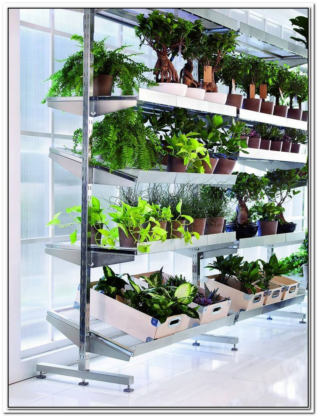 Indoor Garden By Ferber And Dieckmann