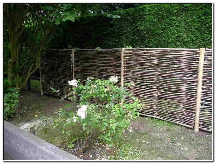 Inspirant Bambou Jardin