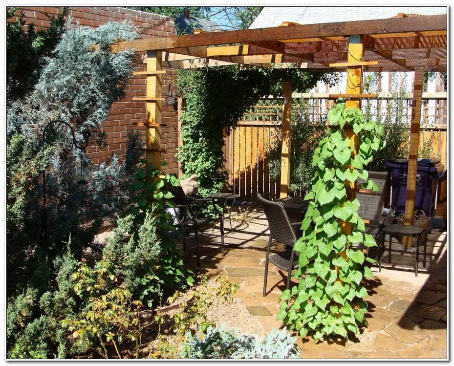 Jardin Et Terrasse Deco