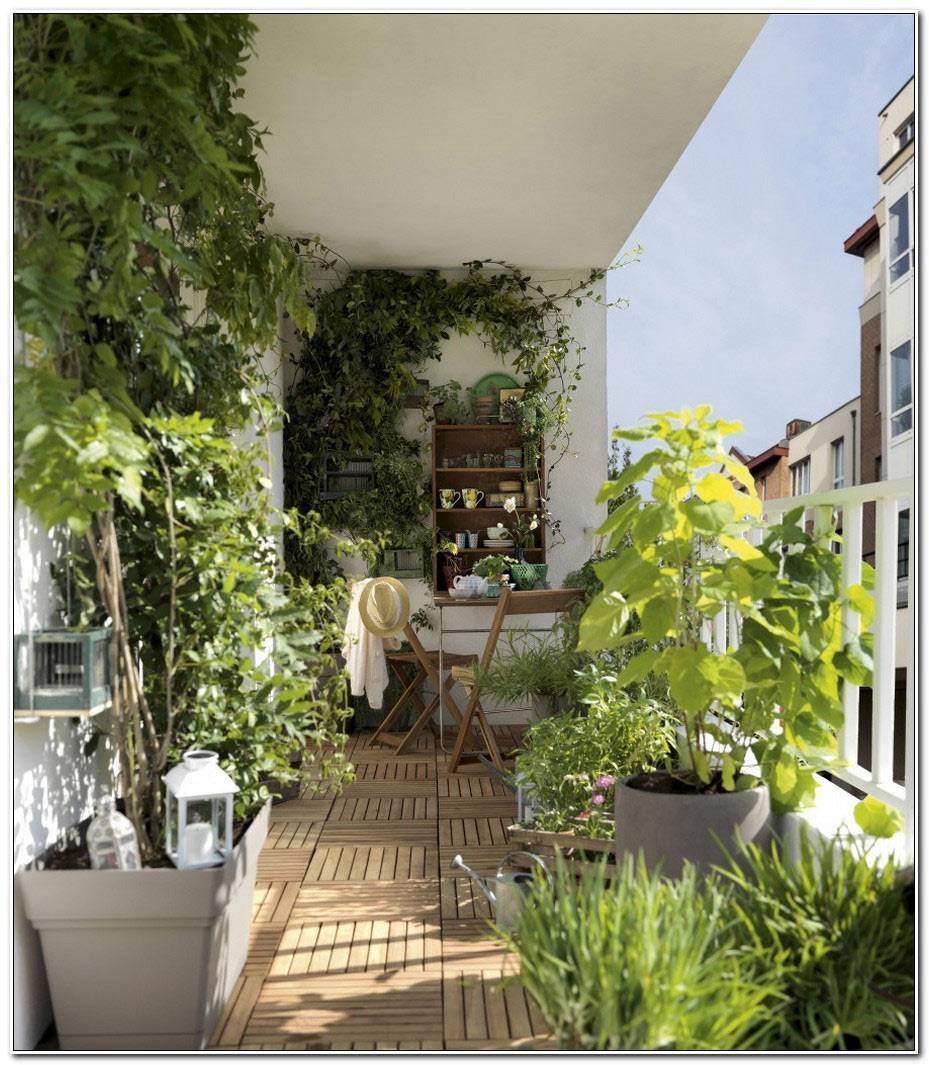 Jardin Terrasses Et Balcons