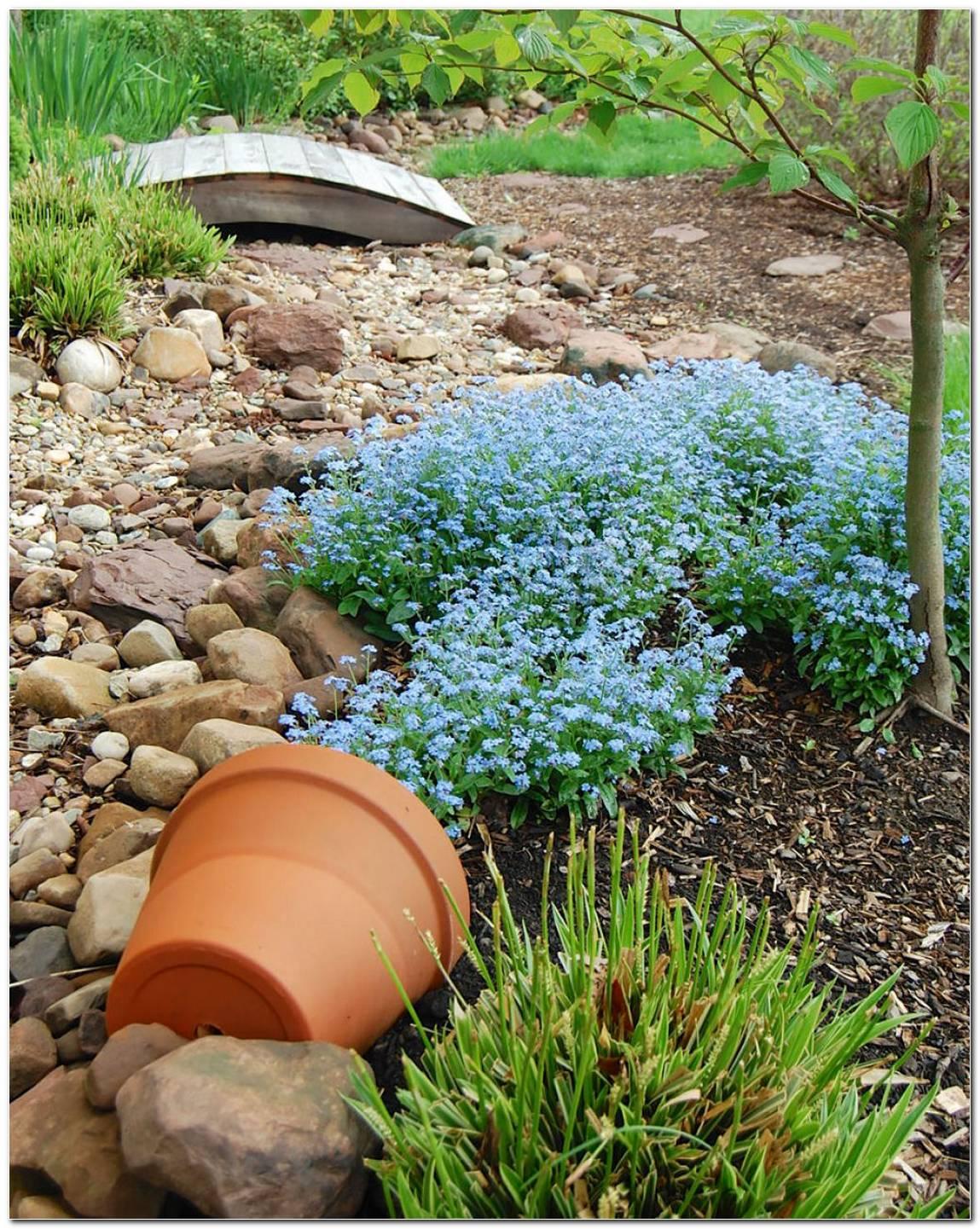 Jardins Com Vasos
